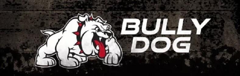 Bully Dog 1
